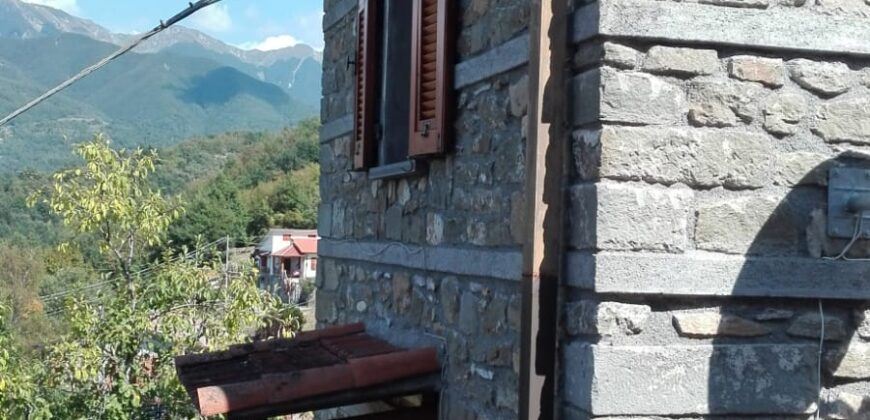INDEPENDENT HOUSE IN STONE WITH GARDEN, THE DOMINANT VIEW . ref. 2226