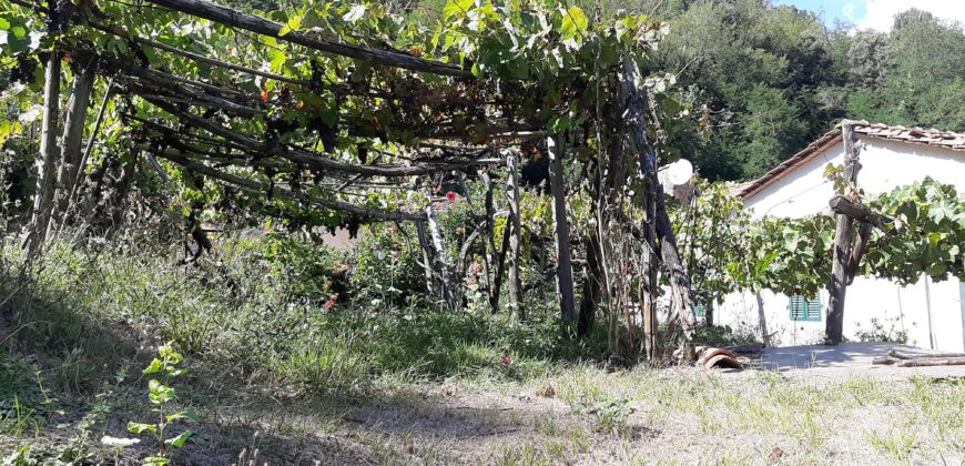 Toscana – Lunigiana – Proprietà composta da due case e giardino ad un prezzo fantastico !!!!! ref. 2384